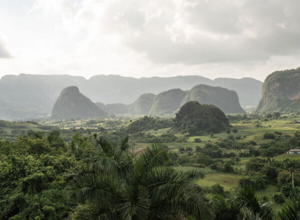 Viñales Valley Day Tour